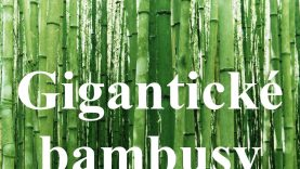 ZAUJÍMAVOSTI A FAKTY : Gigantické bambusy