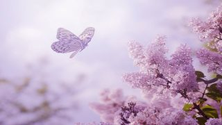 Relaxing Piano Music: Romantic Music