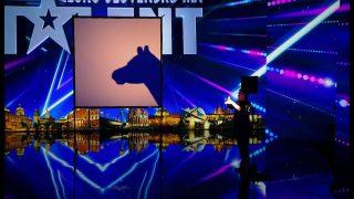 Fantastické stínové divadlo v podání belgického umělce v ČSMT!